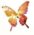 enkel-sommerfugl-cyan